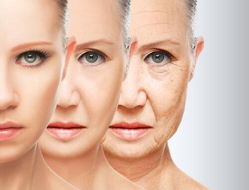Cách trị lão hóa da mặt từ thiên nhiên hiệu quả